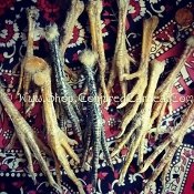 Chicken Foot-Defensive Magick, Purification, Hexing, Protection