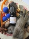 Monkey Paw Oil-Good Luck, Prosperity, Attraction, Drawing