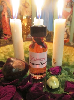 Chuparrosa Oil-Attracts Lovers, Fertility,Prosperity