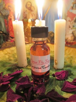 Venus Fly Trap Oil-Grab Hold of Your Goals and Desires For Good
