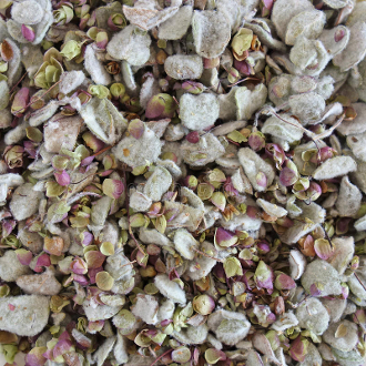Dittany of Crete Herb-Spirit, Divination, Astral Travel, Psychic