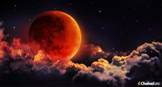 Lunar Eclipse-NOV 30TH-Manifestation, Level Up, Clarity