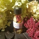 Samhain Oil-Summer's End, Halloween, All Saints, Ancestors